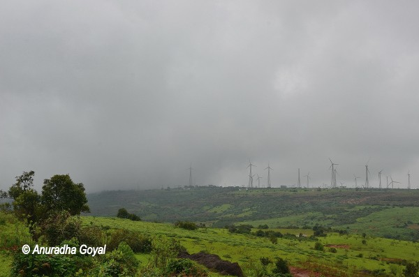 Windmills view Satara, Mharashtra