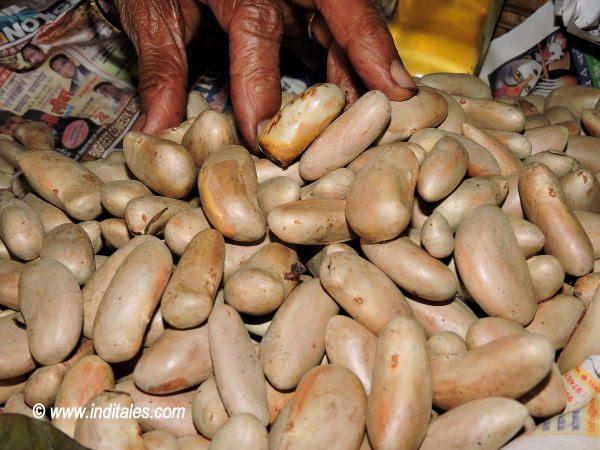 Dried Jackfruit seeds - Goa Summer Delights