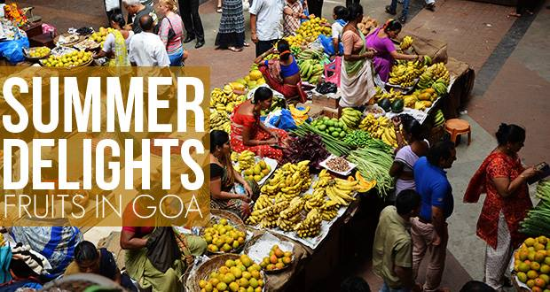 Summer Fruits of Goa - Cashew, Pineapple, Rose Water Apple, Kokum, Carranz, Cotton Fruit, Sweet Lime, Jackfruit