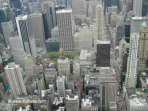 Top View of New York City from Empire Estate Building