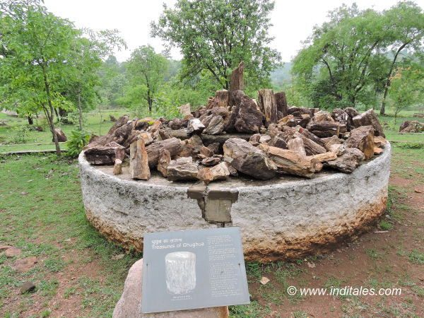 Open Air Display of fossils at Ghughua Fossil Park