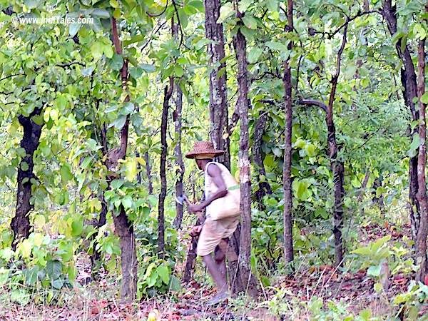 Baiga Man in Bandhavgarh National Park