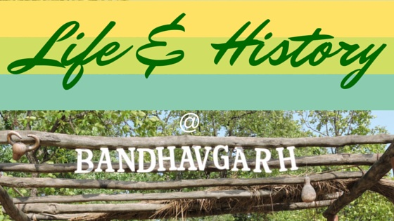 Life history and heritage at Bandhavgarh National Park