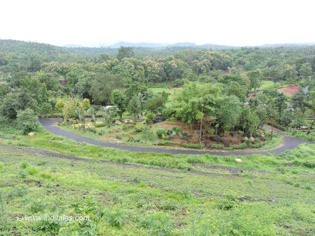 Rock garden by Salaulim dam