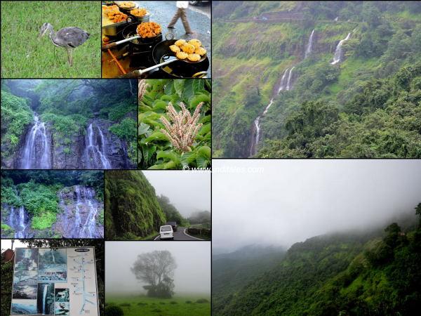 Amboli Ghat collage