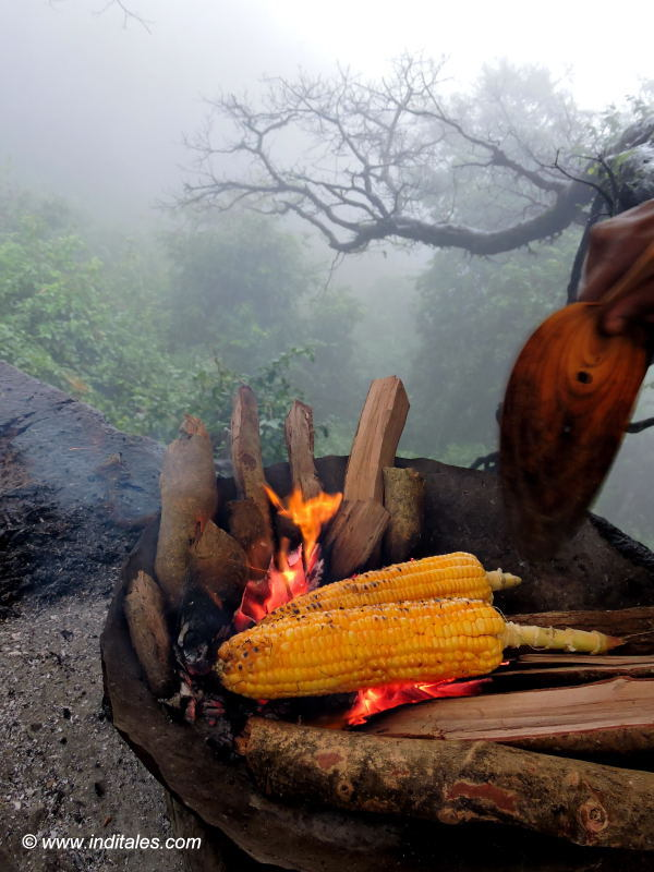 Roasted corn or Bhutta at Amboli Ghat
