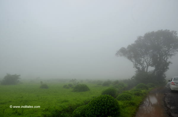 Cloudy road to Kavlesad Amboli Ghat