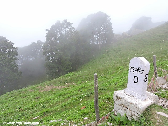 Hatu peak near Narkanda, Himachal Pradesh