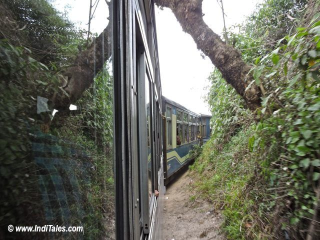 Riding Darjeeling Himalayan Railway
