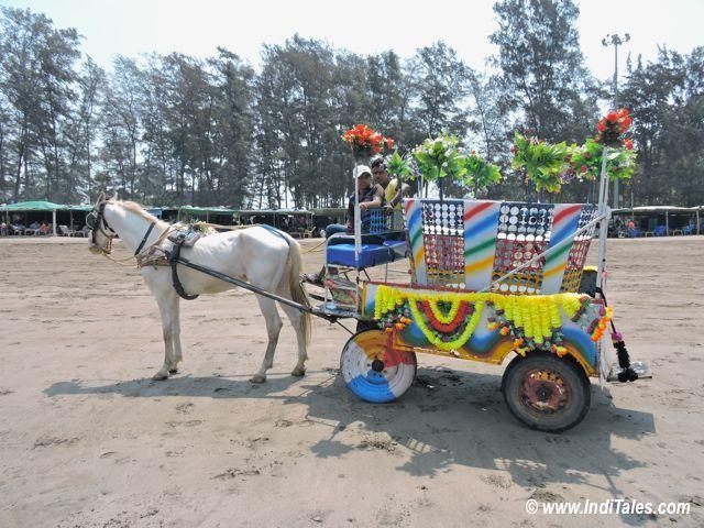 Colorful Horse Carts at Jampore Beach, Daman