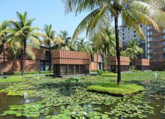 Lotus Pond at ITC Sonar, Kolkata