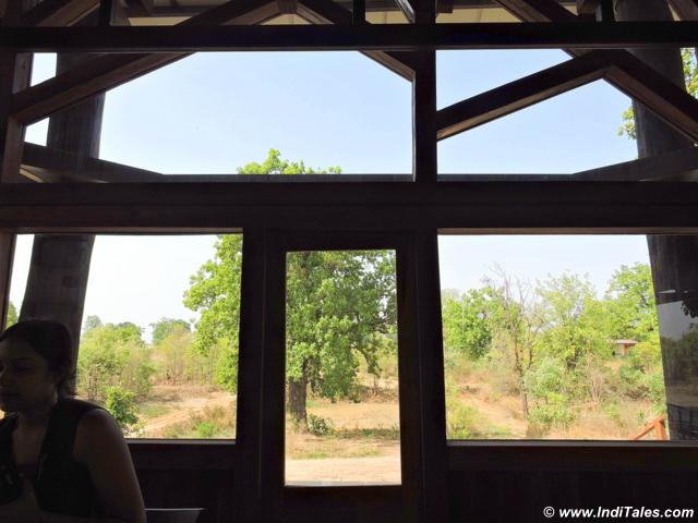 window with a jungle view, Pench National Park