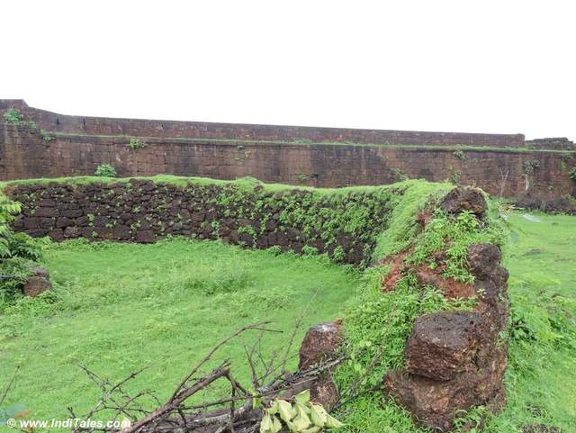 Brown walls and Green leaves inside Jaigard Fort