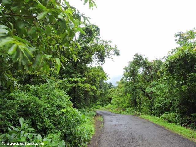 Konkan Coast Road Trip