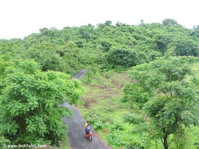 Lush green Konkan coast
