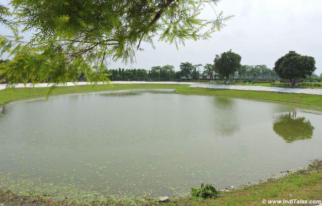 Pond near Cooch Behar Palace