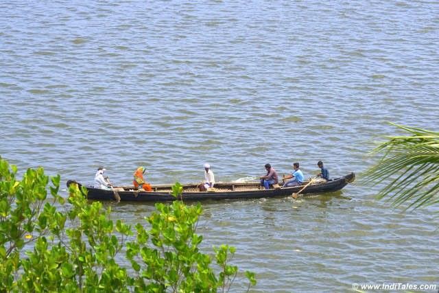 Long narrow boats on Ashtamudi Lake