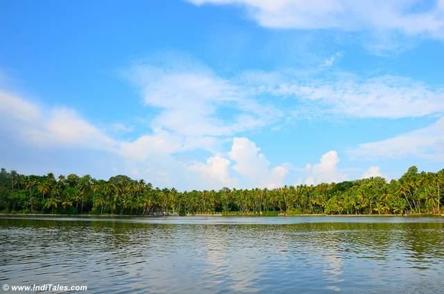 Landscape of Ashtamudi Lake
