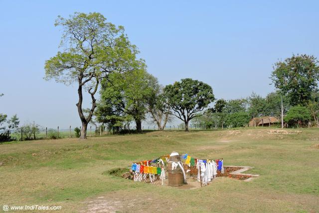 Ashoka Pillar at Gotihawa - Kapilavastu