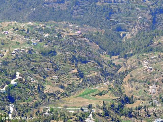 Terraced fields in the valley