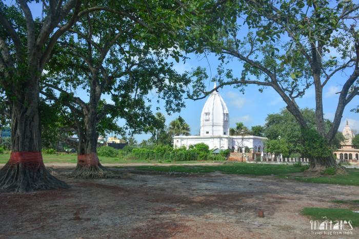 Madhweshwar Mandir Complex Darbhanga View