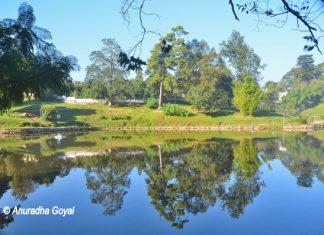 वार्ड झील - शिलांग, मेघालय