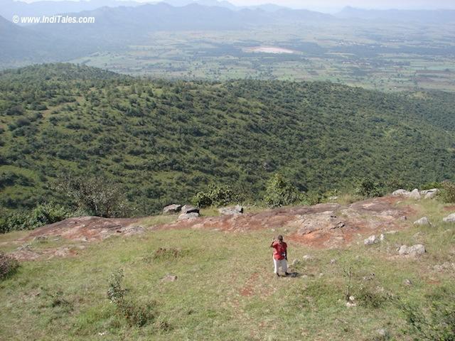 Jogimatti Forest Reserve