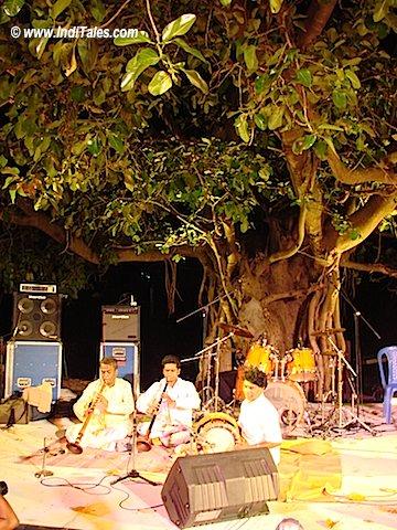 Fireflies concert Bangalore