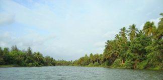 Backwaters of Panchagangavalli river, Kundapura in Coastal Karnataka