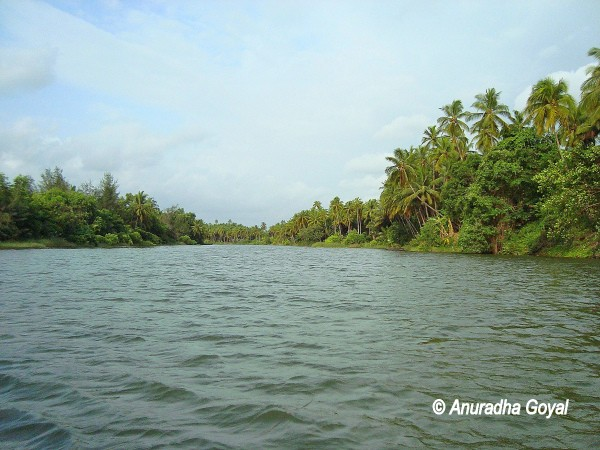 Backwaters of Panchagangavalli river, Kundapura in Coastal Karnataka