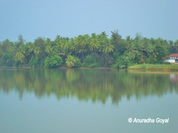 Landscape view across the Panchagangavalli river at Kundapura in Coastal Karnataka
