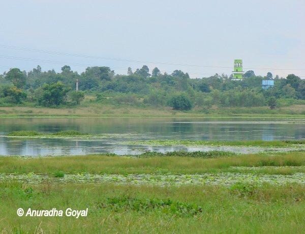 Lal-Bandh lake, Bishnupur Town