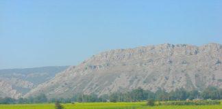 Landscape en route to Alwar with mustard fields