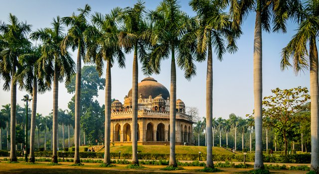 Image result for lodi gardens on new year