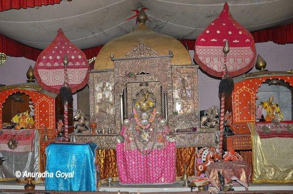 Deities at a Satra, Majuli, Assam