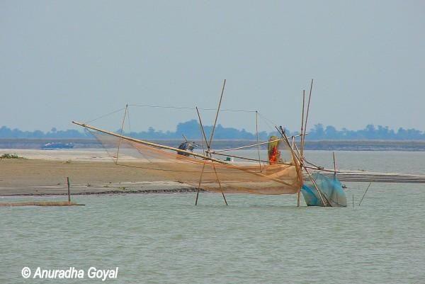 Fishing net on the Brahmaputra river