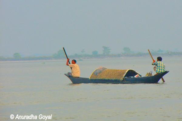 Traditional boat over Brahmaputra river