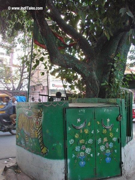 Closet made around the tree, RaniGunj, Secunderabad