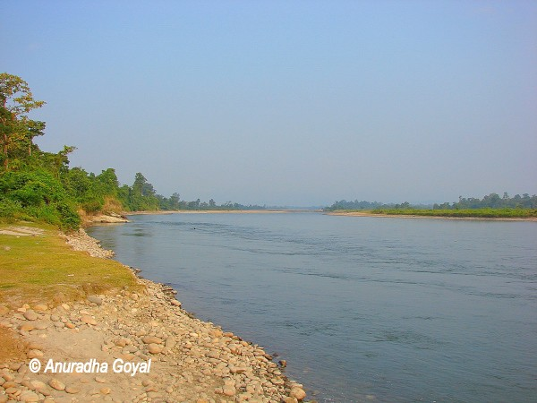 Jia Bhoroli river criss crossing Nameri National Park