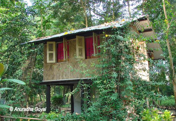 Lodging at Nameri Eco-camp