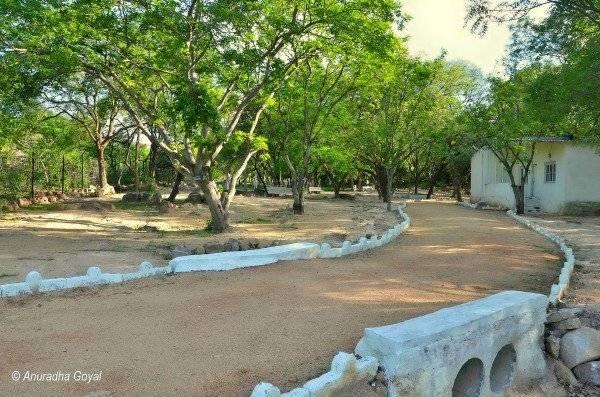 Jawahar Deer park, near Shamirpet Lake