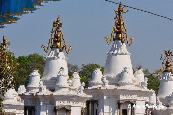 Pashupatinath temple complex, Kathmandu