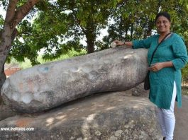 Ringing the Thinthini Pathar at Chhattisgarh