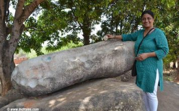 Ringing the Thinthini Pathar at Chhattisgarh