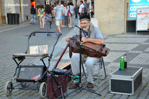 Musician on the streets