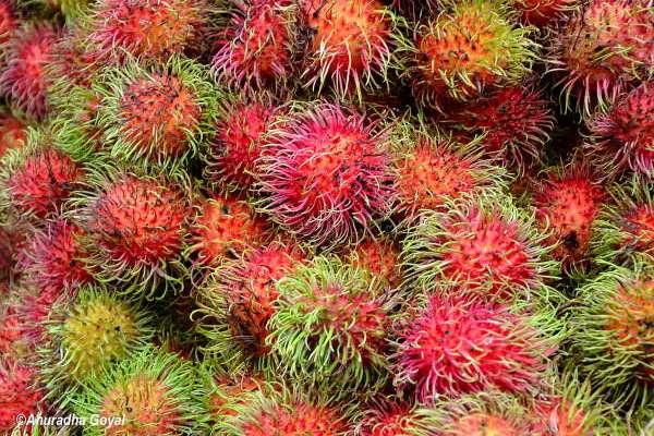 Rambutan, Malaysian Fruits