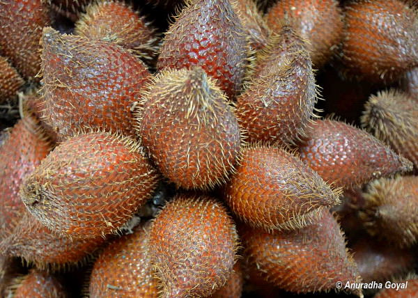 Salak or Snake fruit