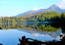 Reflections in Strbske Pleso Lake, Slovakia
