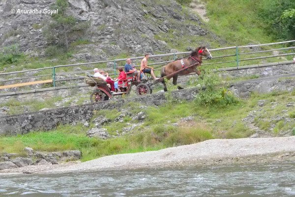 Horse Carts in the Tatra Mountains