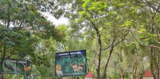 Pocharam Wildlife Sanctuary entrance